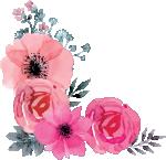 Queen-flowers left